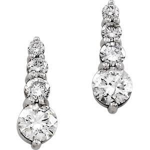 18k White Gold 7/8 ct tw Journey Diamond Earrings