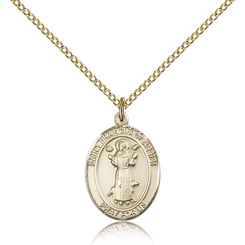 Gold Filled 3/4in St Francis Medal & 18in Chain
