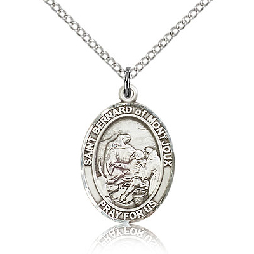 Sterling Silver 3/4in St Bernard Medal & 18in Chain