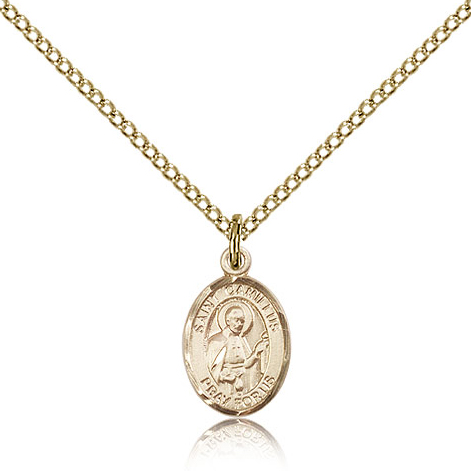 Gold Filled 1/2in St Camillus Charm & 18in Chain