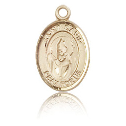 14kt Yellow Gold 1/2in St David Medal
