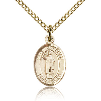 Gold Filled 1/2in St Stephen Charm & 18in Chain