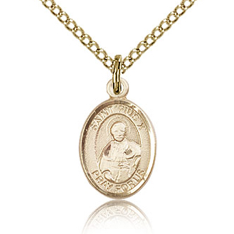Gold Filled 1/2in St Pius X Charm & 18in Chain