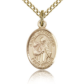 Gold Filled 1/2in St Januarius Charm & 18in Chain