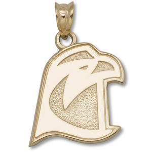 14kt Yellow Gold 5/8in Bowling Green Falcon Head Pendant