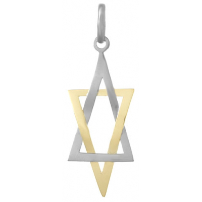 Sterling Silver and 14kt Yellow Gold Star of David