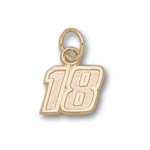 14kt Yellow Gold 5/16in Kyle Busch #18 Charm