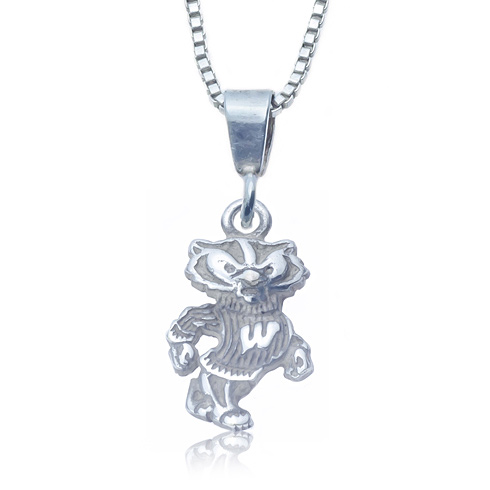 Sterling Silver 16in Charm Wisconsin Necklace