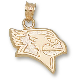 14kt Yellow Gold 5/8in Illinois State Redbird Pendant