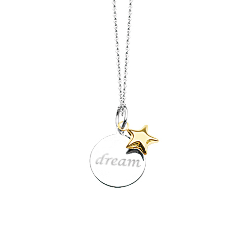 Sterling Silver 14kt Gold 18in Dream Necklace