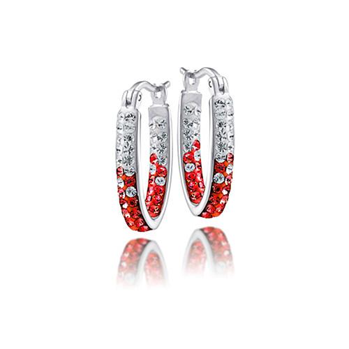 Sterling Silver Wisconsin Badgers Crystal Hoop Earrings