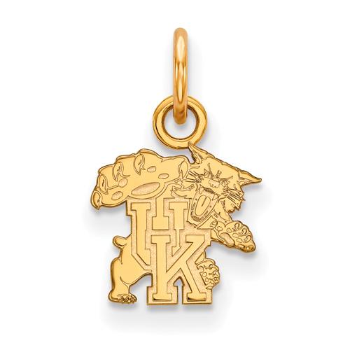 10kt Yellow Gold 3/8in University of Kentucky Wildcat Charm