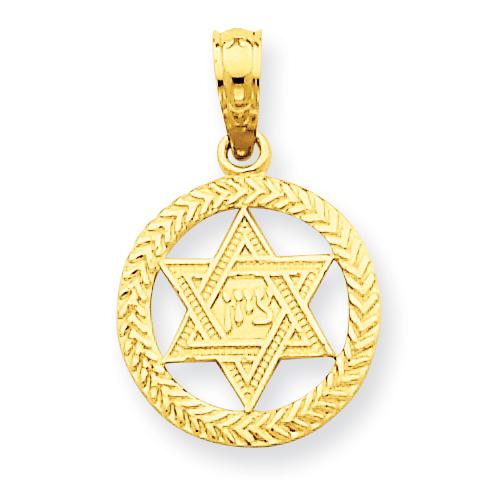 14k 1/2in Star of David in Circle Pendant