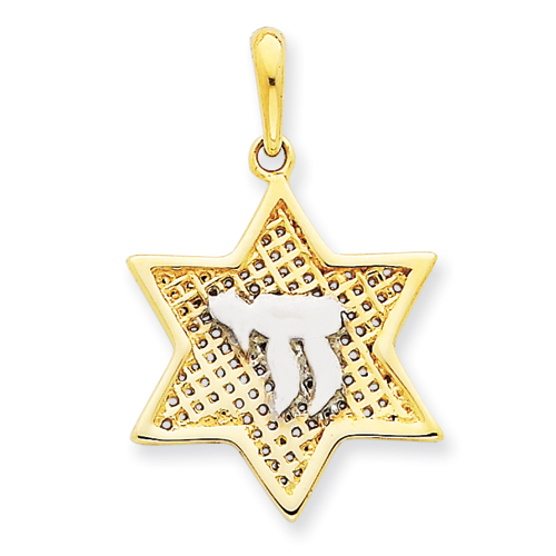14k & Rhodium 3/4in Mesh Star Of David with Chai Pendant