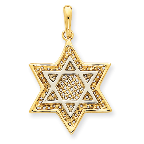 14k Two-Tone 7/8in Solid Open-Back Meshed Star of David Charm