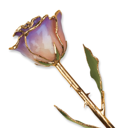 Lacquer Dipped Gold Trim White & Blue Opal Rose