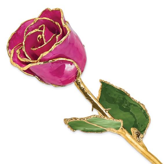Lacquer Dipped Gold Trim Fuschia Rose