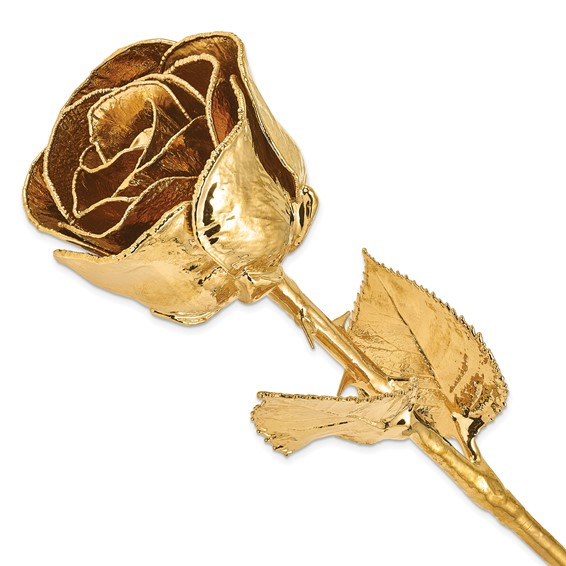 24kt Gold Dipped Rose