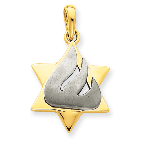 14k Two-tone Gold 3/4in Star of David Pendant with Shin
