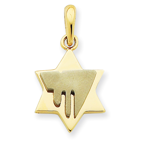 14k Two-tone 11/16in Chai on Star of David Pendant