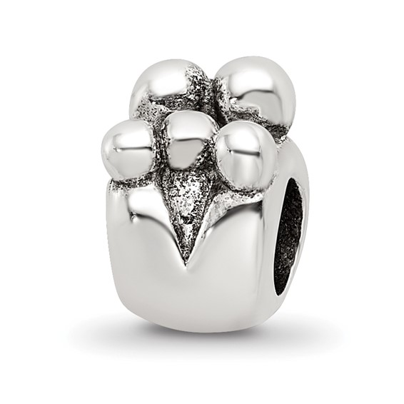 Sterling Silver Reflections Family of 5 Bead