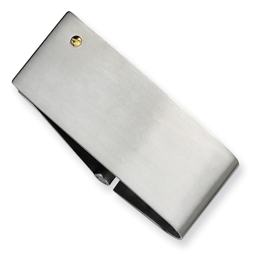 Stainless Steel 14kt Gold Accent Money Clip