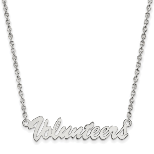 Sterling Silver Volunteers Pendant with 18in Chain