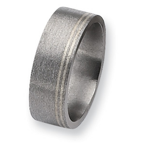 Titanium and Sterling Inlays Satin 8mm Band