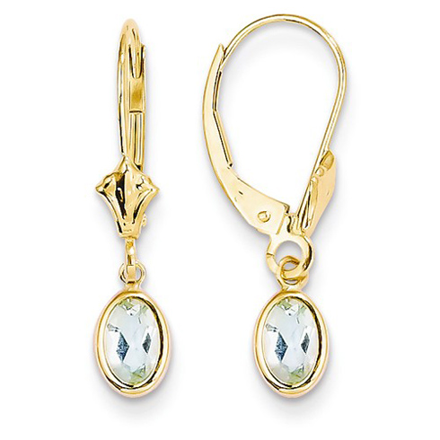 14kt Yellow Gold 7/8 ct Oval Aquamarine Leverback Earrings