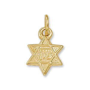 14kt Yellow Gold 7.5mm Petite Star of David Charm