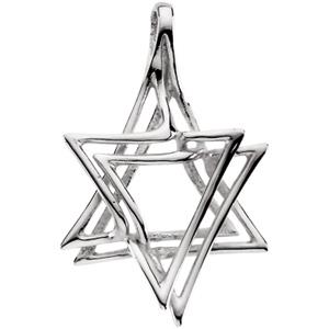 14kt White Gold 1in Israeli Star of David Pendant