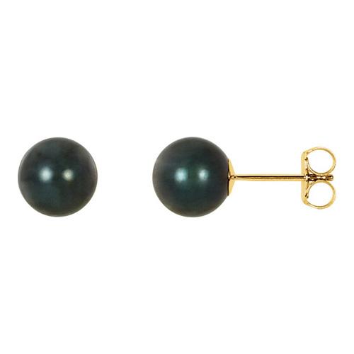 14kt Yellow Gold 7mm Black Akoya Cultured Pearl Stud Earrings