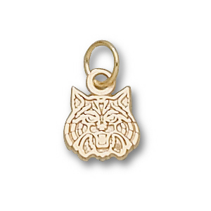 10kt Yellow Gold 5/16in University of Arizona Wildcats Charm