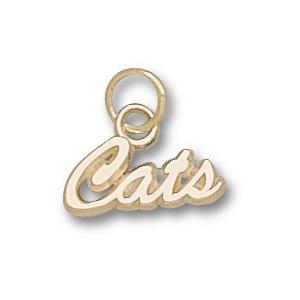 14kt Yellow Gold 1/4in University of Arizona Cats Charm