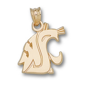 10kt Yellow Gold 9/16in Washington State Cougar Head Pendant